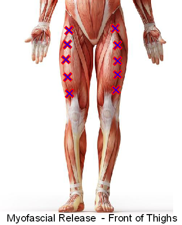Myofascial release - Front of thighs